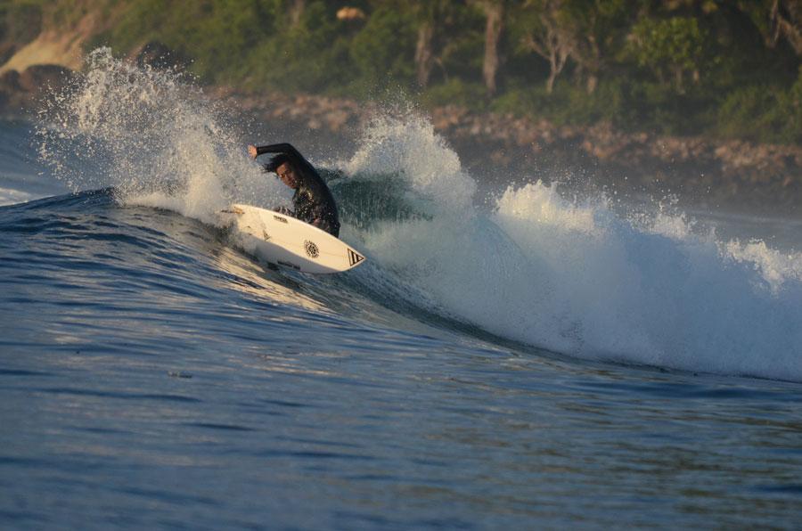 """""""SPRINGER"""" in Lombok"""
